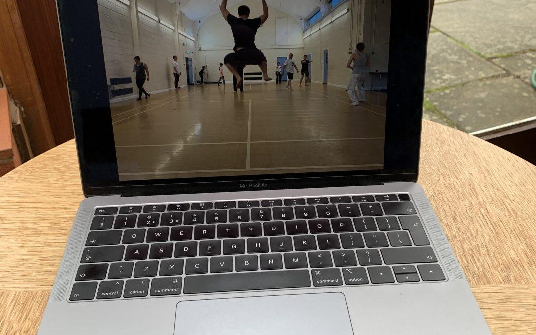 Online Kung Fu Training – Fighting the Virus!